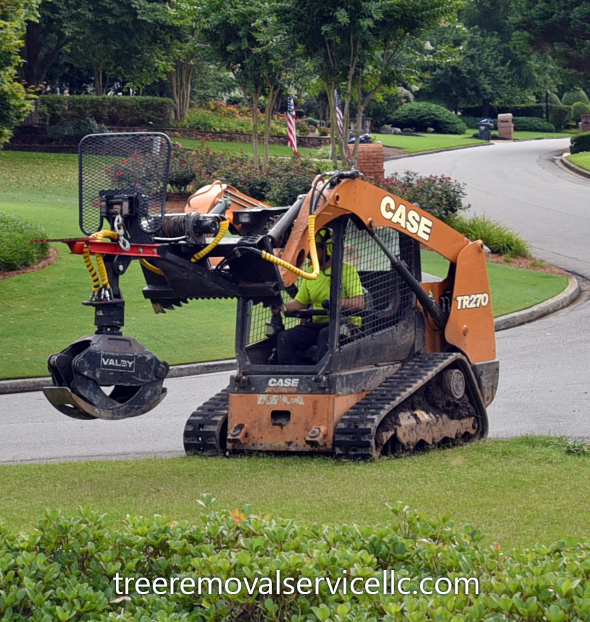 tree removal equipment